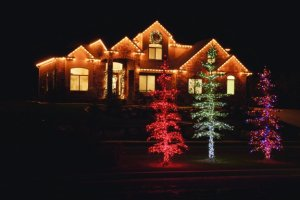 LED Holiday's beautiful red C7 Christmas LED lights.